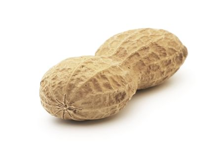 goober: one peanut isolated on a white background
