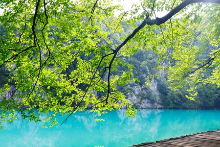 Beautiful view of blue lake in summer afternoon in Plitvice national park in Croatia. Фото со стока