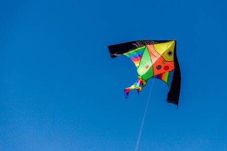 Brightly colored kite in the wind on a blue sky without clouds.Feel freedom