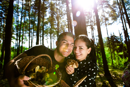 Couple picking mushrooms in the forest Stock Photo - 23764963