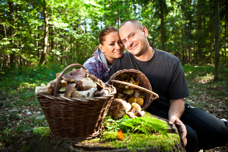 Couple picking mushrooms in the forest Stock Photo - 23765036