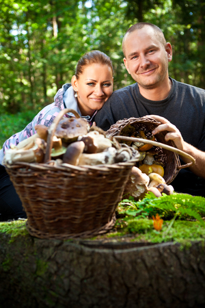 Couple picking mushrooms in the forest photo
