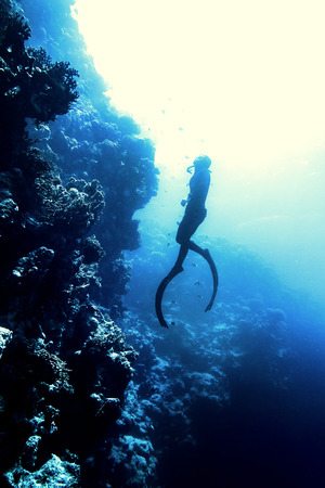 spearfishing: Freediver in wetsuit neoprene swim in the sea