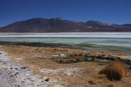 sud: Laguna Blanca on the Sud Lipez Altiplano  Stock Photo