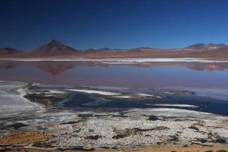 sud: Laguna Colorada landscape on the Sud Lipez Altiplano