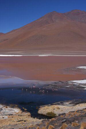 lipez: Laguna Colorada on the Sud Lipez Altiplano  Stock Photo