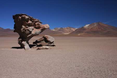 lipez: Stone tree on the Sud Lipez Altiplano  Stock Photo