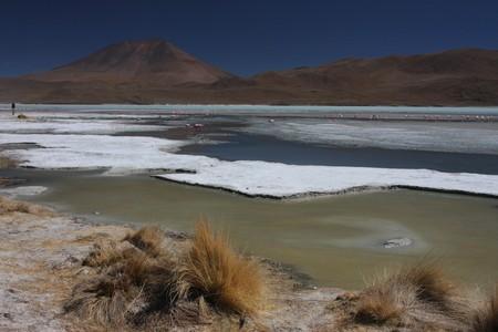 Laguna Hedionda on the Road of Jewels in Sud Lipez Altiplano photo