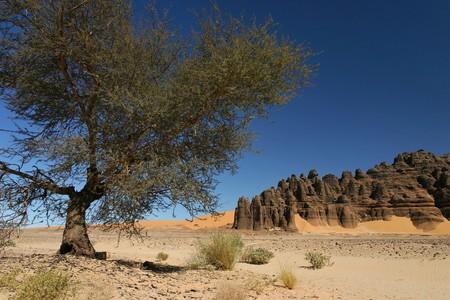 Hoggar Tassili, Sahara desert, South of Algeria photo