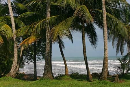 Costa Rica Atlantic Coast in Cahuita Stock Photo