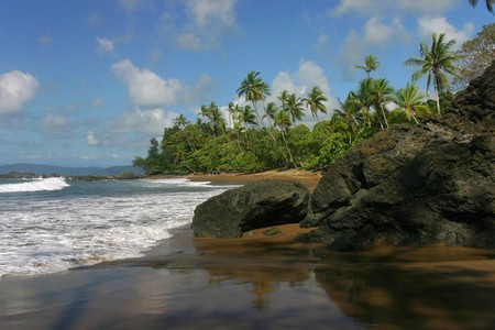 Pacific coast in Corcovado park  photo
