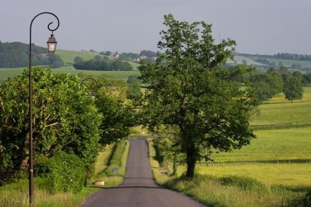 Country Road Reklamní fotografie