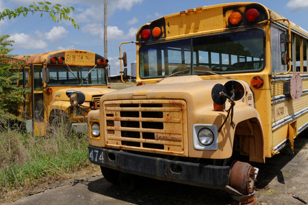 estimated: NATCHEZ MISSISSIPPI May 7 2015 : School bus cemetery. School buses provide an estimated 10 billion student trips every year. Editorial