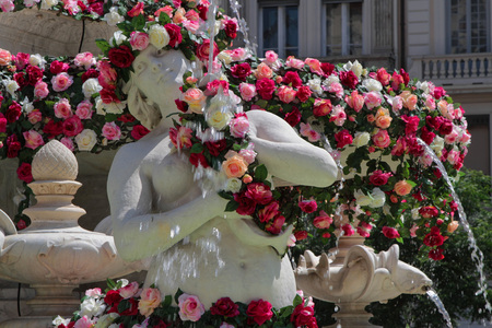 mondial: LYON FRANCE June 7 2015 : The World Festival of Roses Festival Mondial des Roses takes place in Lyon from May to October. Places and fountains of the city are flowered for the occasion. Editorial