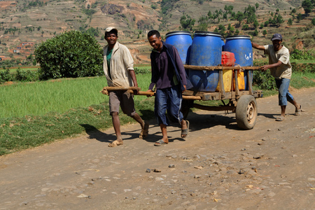 nominated: BETAFO, MADAGASCAR, November 17, 2015 : Heavy load on the path. The irrigated rice paddies of the area are emblematic of the Malagasy highlands and were nominated to the World Heritage Sites lists. Editorial