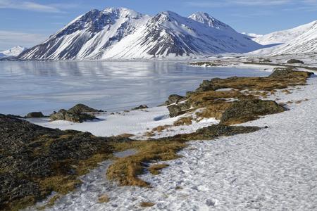 eastern: Eastern fjords of Iceland
