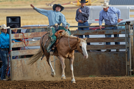 DUPREE, SOUTH DAKOTA, September 15, 2018 : Saddle bronc riding during a regional Rodeo in Dupree. Rodeo is a competitive sport that arose out of the working practices of cattle herding and based on the skills required of the working cowboys.