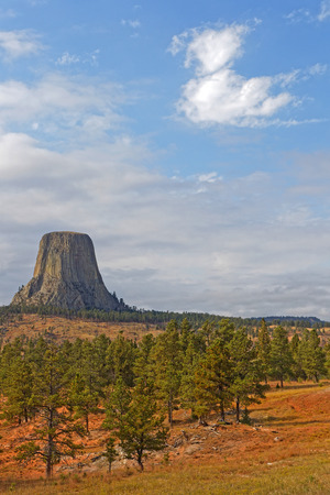 The Devils Tower over the forest