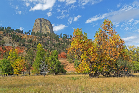 Autumn colors in the Devils Tower park Stockfoto