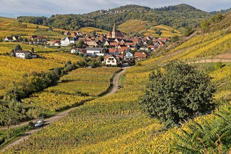 The village of Niedermorschwihr in its vineyards landscape