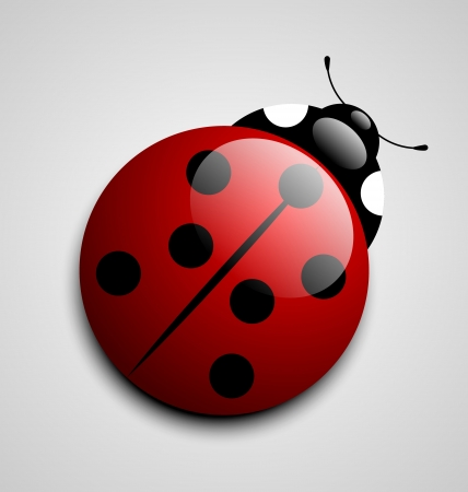 ladybird: Glossy ladybug icon isolated on grey background Illustration