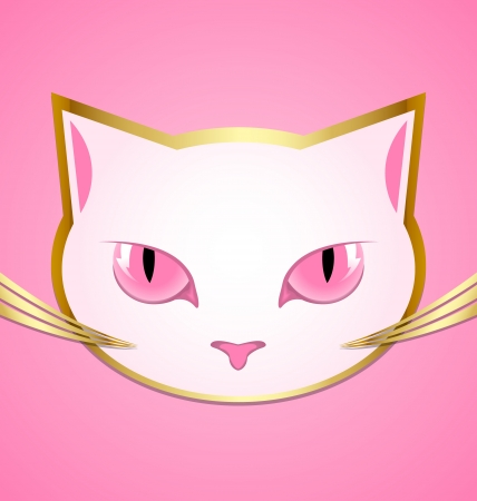 pink pussy: Golden and white cat head isolated on pink background