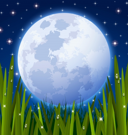 Full moon and starry night sky with grass meadow in the foreground Ilustracja