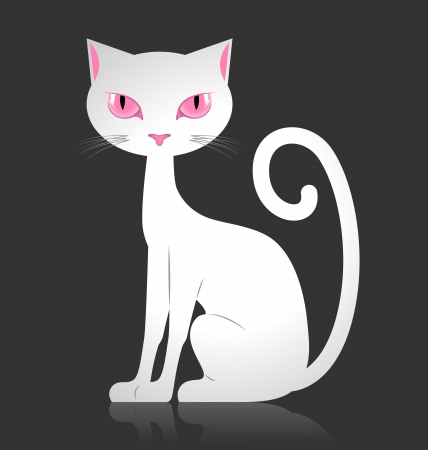 White cat isolated on dark background