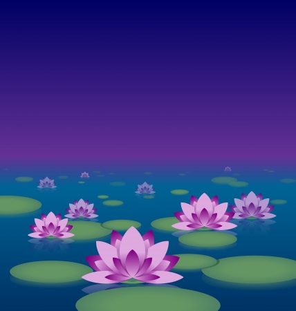 garden pond: Idyllic lotus pond at night with copy space for your custom text Illustration