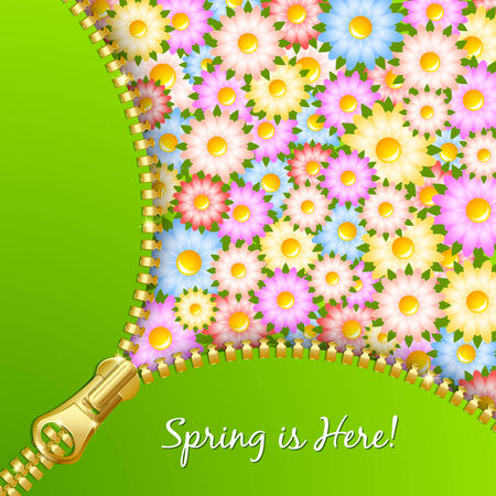 unzipped: Unzipped zipper with spring floral pattern in the background