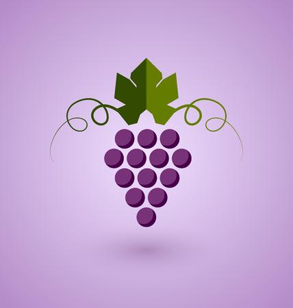 sauvignon: Red grape bunch in simple retro style