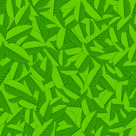 spearmint: Green and fresh mint herb leaves background Illustration