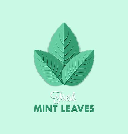Verse munt bladeren geïsoleerd op bleke groene achtergrond Stock Illustratie