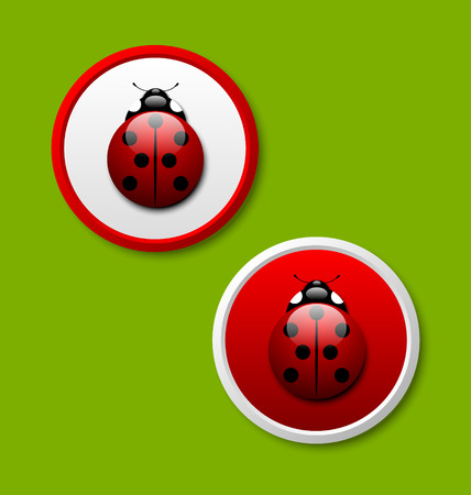 Two ladybug icons isolated on green background Ilustrace