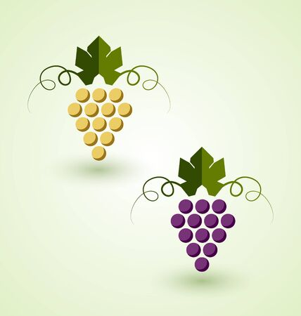 white grape: Red and white grape bunch in simple retro style Illustration
