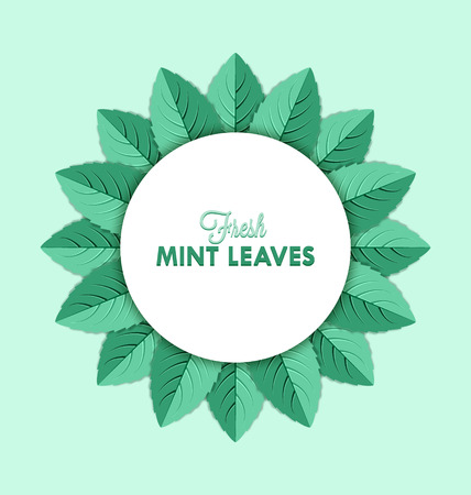 spearmint: Fresh mint leaves decoration isolated on pale green background