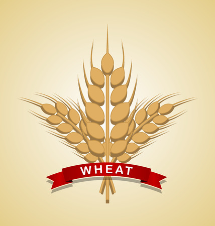 spelt: Bunch of wheat with ribbon on pale background Illustration