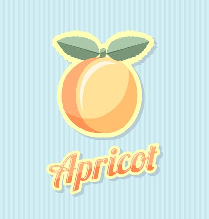 apricot jam: Retro apricot with title on striped background Illustration