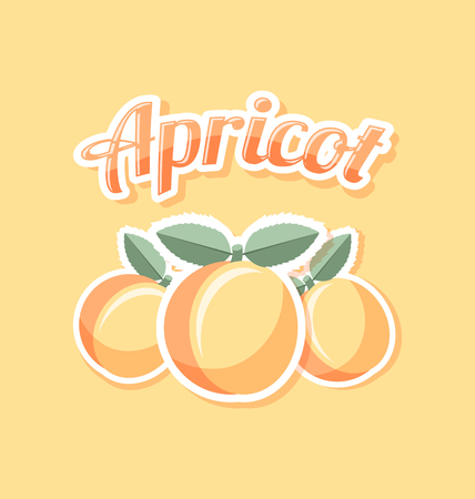 skin color: Retro apricot with title on pale orange background