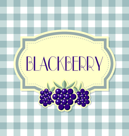 blackberry: Blackberry label in retro style on squared background