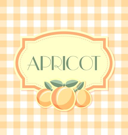apricot jam: Apricot label in retro style on squared background Illustration