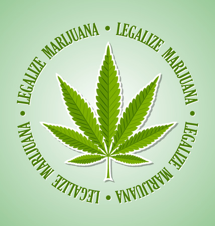 marijuana plant: Legalize marijuana hemp (Cannabis sativa or Cannabis indica) leaf on pale green background