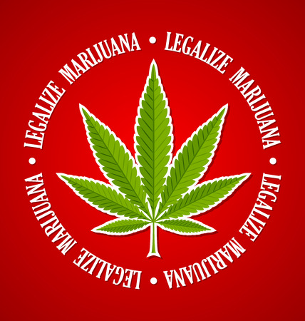 Legalize marijuana hemp (Cannabis sativa or Cannabis indica) leaf on red background Çizim