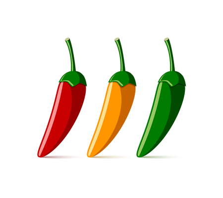 pungent: Extremely hot red, yellow and green chilli peppers placed on white background Illustration
