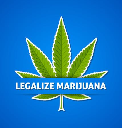 hoja marihuana: Legalizar la marihuana cáñamo (Cannabis sativa o Cannabis indica) hojas sobre fondo azul