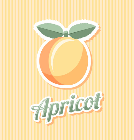 apricot: Retro apricot with title on striped background Illustration