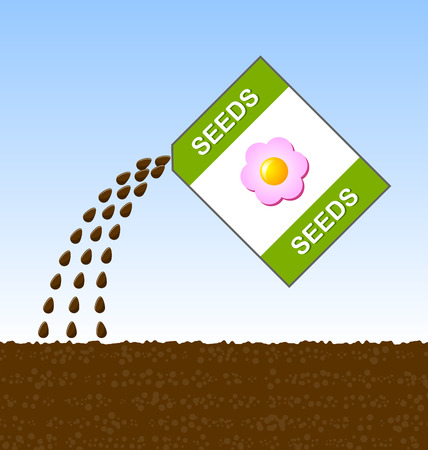 sowing: Sowing seeds of flowers into the soil in the springtime.