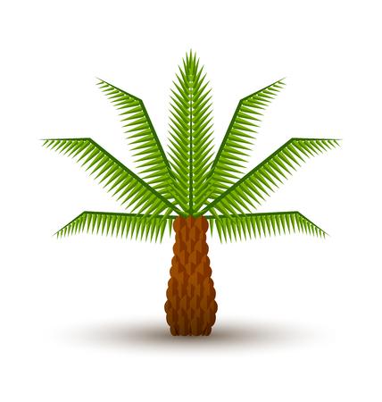 Palmboom pictogram op een witte achtergrond Vector Illustratie