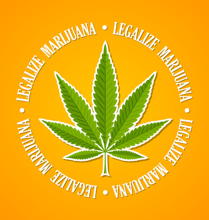 Legalize marijuana hemp (Cannabis sativa or Cannabis indica) leaf on yellow background