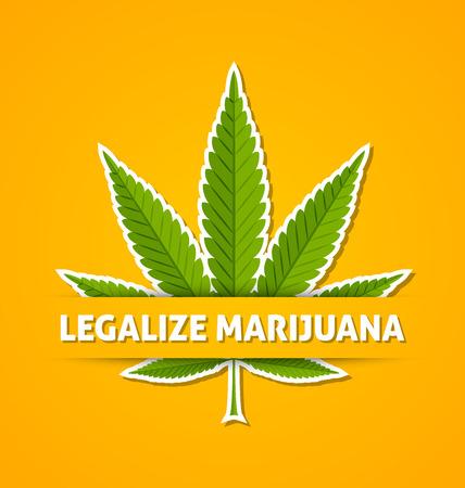 Legalize marijuana hemp (Cannabis sativa or Cannabis indica) leaf on yellow background